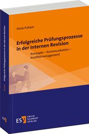 Erfolgreiche-Prüfungsprozesse-in-der-Internen-Revision.png